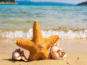 THIS SUMMER 15% DISCOUNT FOR STAYS OF THREE OR MORE NIGHTS!.