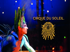 PACK ESPECIAL ESPECTACLE CIRQUE DU SOLEIL