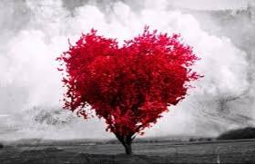 ROMANTIC GETAWAY! WE WAIT YOU AT ATENEA CALABRIA APARTAMENTS 3* BARCELONA